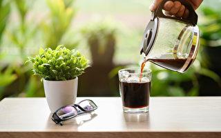 没喝完的咖啡和咖啡渣啥用?4招变园艺妙帮手