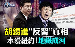 【拍案惊奇】胡锡进否定新文革 与习唱对台戏?