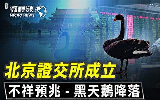 【微视频】北京成立证交所不详预兆 黑天鹅降落