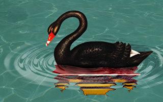 【财商天下】北交所成立 黑天鹅来了