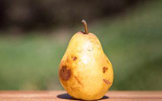 變黑、變爛的水果,哪些情況還能吃、哪些情況不能吃?(Shutterstock)