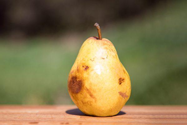 变黑、变烂的水果,哪些情况还能吃、哪些情况不能吃?(Shutterstock)