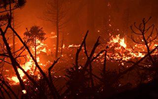加州秋季乾燥 消防局提醒注意防火