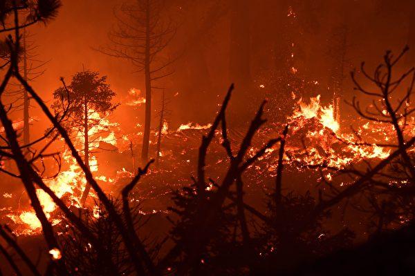 加州秋季干燥 消防局提醒注意防火