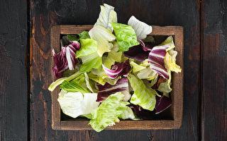 冷藏生菜有妙方 一连5天都吃得到清脆蔬食