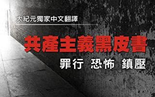 袁斌:我们从小到大学到的历史哪些是假的(9)