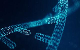 DNA芯片技術獲突破 首次進行複雜數學運算