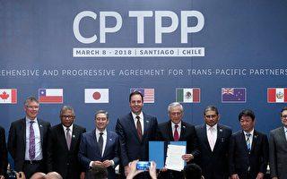 繼中共後 台灣申請加入CPTPP 誰勝算大?