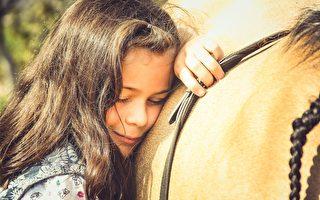 疫情期間 人們用「馬療法」緩解焦慮情緒