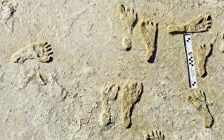 北美最古老人类脚印出土 距今2.3万年