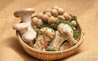 日本長野縣為第一長壽縣,主要原因應為當地特產的蕈菇類等農作物。(Shutterstock)