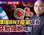 【健康1+1】輝瑞BNT疫苗真有胚胎細胞嗎?