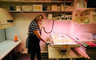 組圖:芬蘭實驗室研發出永續生長咖啡