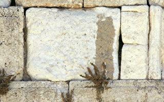 耶路撒冷哭牆之淚