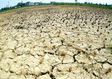 大陸乾旱持續數月 江西近33萬人飲水困難