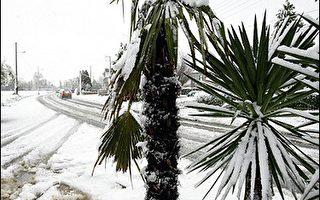 欧洲暴风雪袭击 十人死亡
