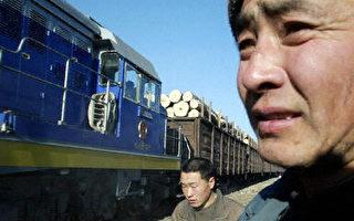 外电指中国成为工业原料的黑洞