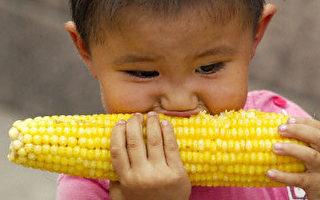 中国因粮食进口巨幅成长而忧虑粮食危机