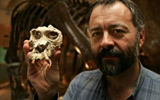 西班牙發現1300萬年前古猿化石