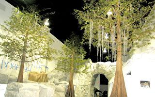 恐龍大戰達爾文 國際聚焦美博物館