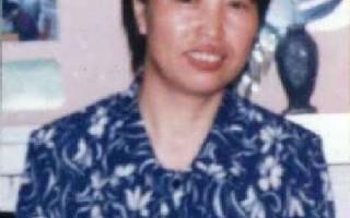 聯合國中國考察    關注李淩虐殺事件