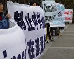 逾百澳洲民众汇聚昆省省会布里斯班声援 350 万退党(大纪元)
