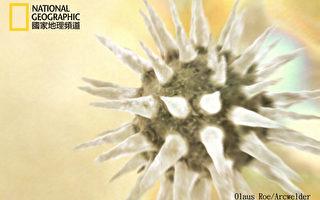 空中到处飘病毒  每天每平米地面落下8亿