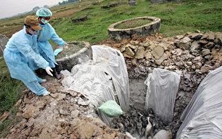 初步检验:越南出现人类感染禽流感新案例