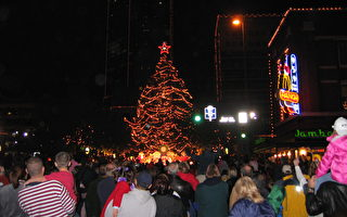 德州福和市灯光游行 庆传统节日