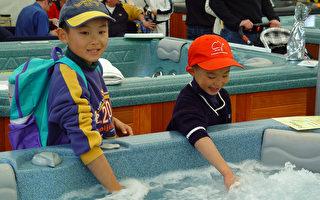 一匙按摩浴缸的水… 细菌数超过200万