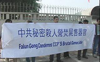 马来西亚法轮功抗议中共杀人售器官