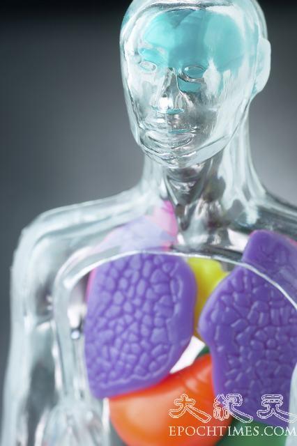李大衛:器官移植可能是夢魘的開始?
