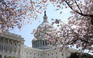 美共和党发布医保新法案 抵税替代补助