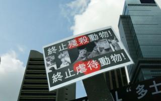 组图:市民集会吁爱护动物
