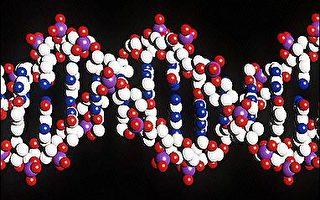 人类第一对染色体完成基因定序