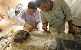 组图:埃及帝王谷发现3千年前防腐材料
