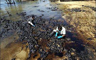 菲國外海油輪漏油嚴重 綠色和平展開調查