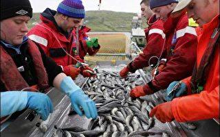 气候变迁影响英国海洋环境
