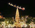 The Grove 購物中心全美最高的聖誕樹。(季媛攝影/大紀元)