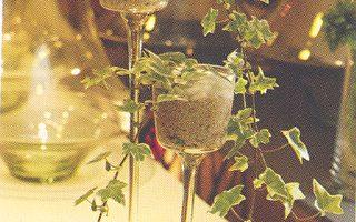 《簡單玩花草》涼夏水生植物(四)