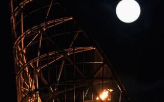 人类病号犯罪增多 月亮惹的祸?
