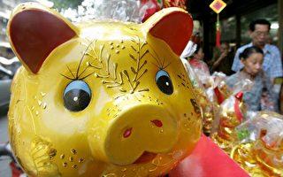 """【翻墙必看】猪年中共央视春晚为何""""禁猪""""?"""