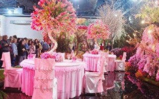 组图:奇花异卉 世界最大室内花展