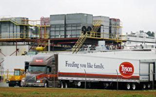 美国食品厂商悄下禁令 不要中国原料