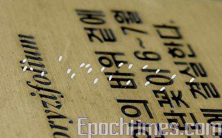 韩国多处现三千年一开之优昙婆罗花