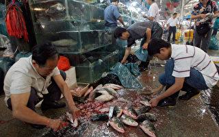 中國黑心產品 聲名狼籍引消費信心危機