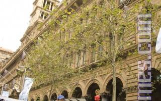 7.20法轮功反迫害八年 悉尼集会呼吁终结迫害