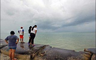 狄恩颶風威力持續增強  墨西哥關閉沿岸油田