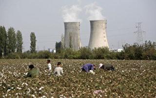 美禁新疆棉花 中国巨额出口时装链断裂