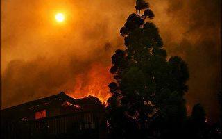 加州野火猖狂 數十萬人撤離 巨星逃難